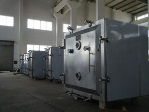 Pharmaceutical GMP Standard Vacuum Dryer Machine